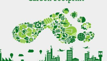 Green IT can champion cuts in carbon emissions