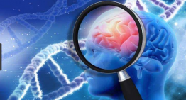 New study offers potential new drug targets for Alzheimer's