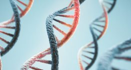 AI detects new class of genetic mutations behind autism