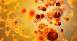 Decoded: What triggers spread of cancer cells