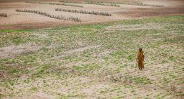 Desertification in India – Anantapuramu in Andhra